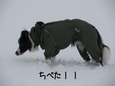雪リターンズ14.13/01/28