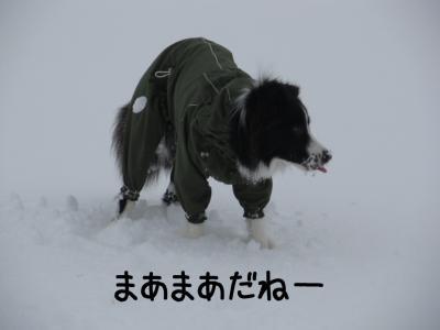 雪リターンズ15.13/01/28