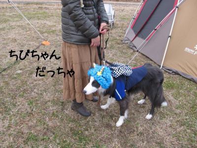 JFA我孫子応援01.13/02/03