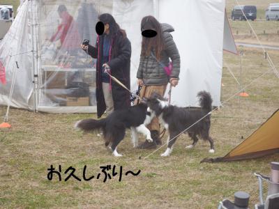 JFA我孫子応援03.13/02/03