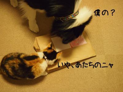 新首輪01.13/02/07