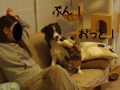 無差別級06.13/02/09