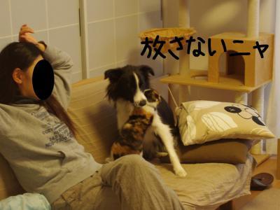 無差別級07.13/02/09