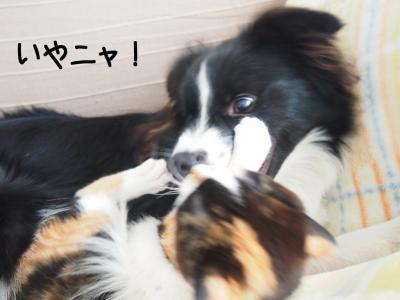 再戦04.13/03/03