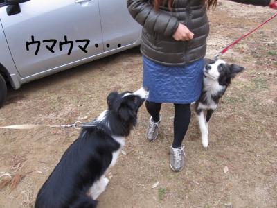 JFAつくば07.13/03/10