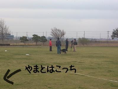 JFA取手01.13/03/24