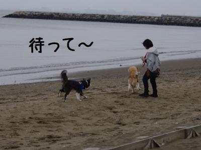 ちびINちば33.13/04/01