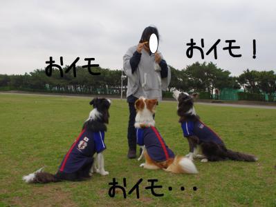 ちびINちば43.13/04/01