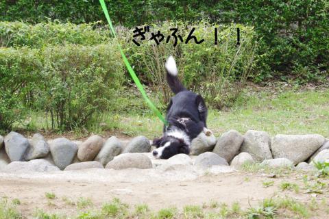 飛び石転落2.12/06/03