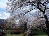 Hitsujiyama_Park.jpg