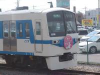 Kumagaya_Menma_Shibazakura_Express.jpg