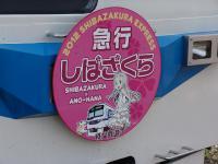Menma_Shibazakura_Express_Headmark.jpg