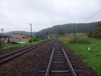 Nishigishi_5.jpg
