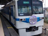 Shibazakura_Express.jpg