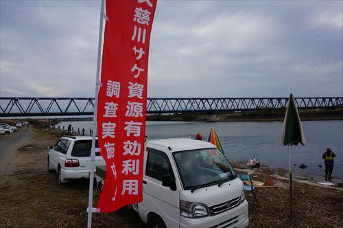 久慈川調査