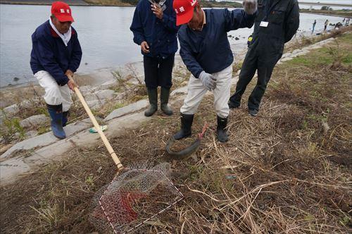 久慈川鮭釣上げ