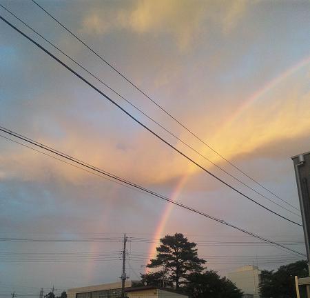 大きな虹w