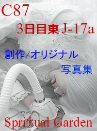 C87_Banner_002.jpg