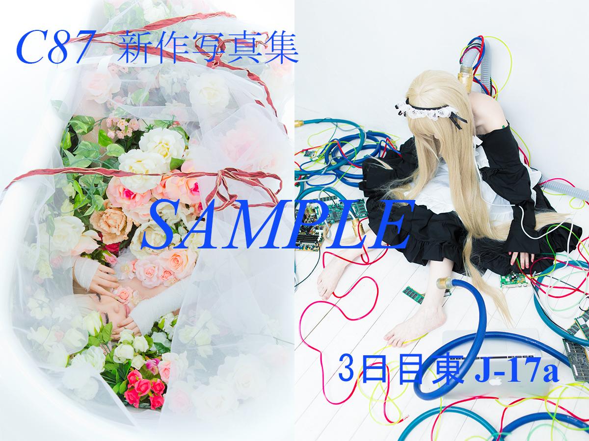 C87_sample_01.jpg