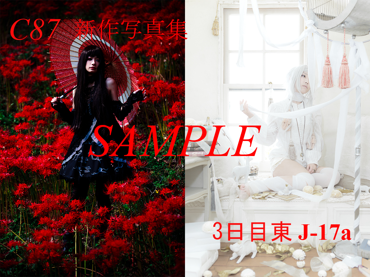 C87_sample_02.jpg