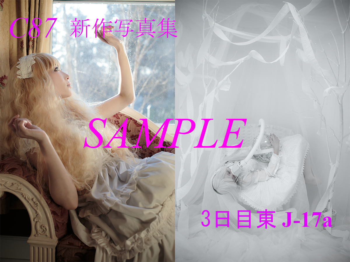 C87_sample_04.jpg