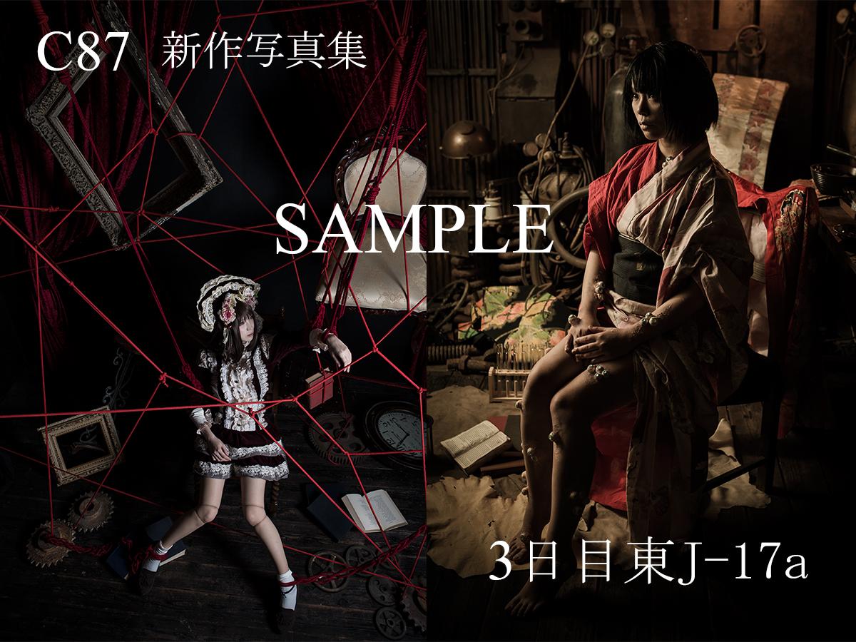 C87_sample_06.jpg