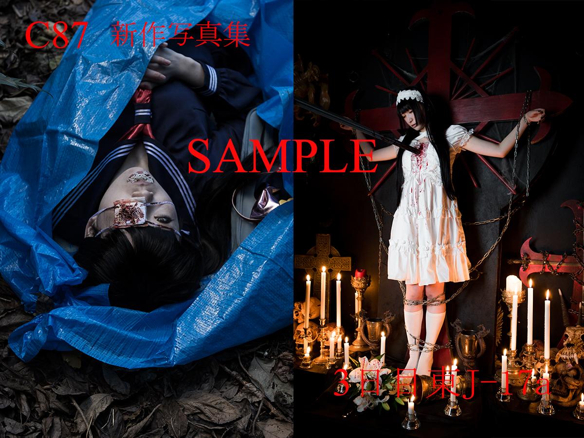 C87_sample_07.jpg