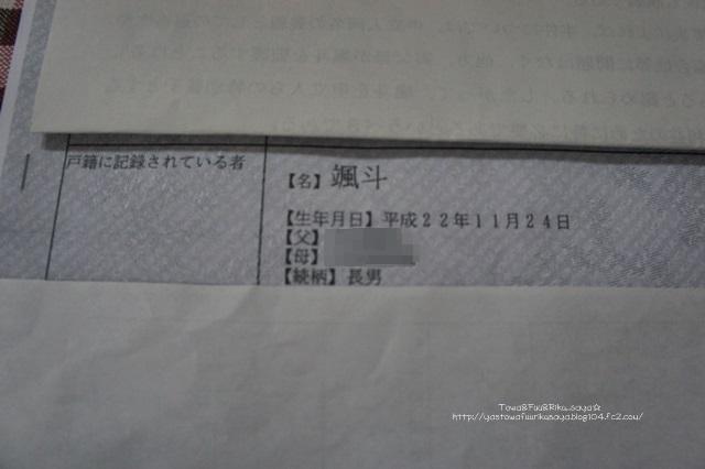 DSC04346-1.jpg