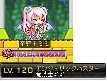 Maple130225_1046058.jpg