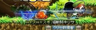 Maple130607_06463277.jpg