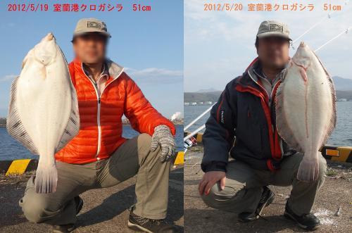 DVC00092-2-1.jpg