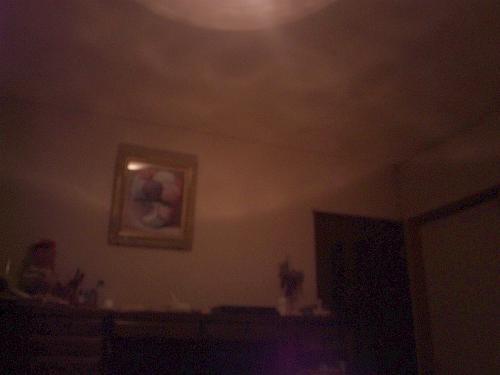 DVC00245-1_20121129111244.jpg