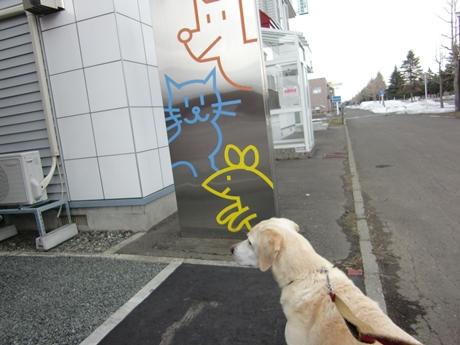 札幌最北端の動物病院