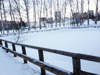 130101池も凍る