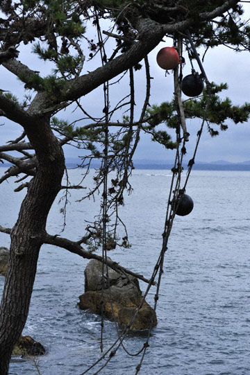 blog Miyagi, Kesennuma, Iwaisaki_DSC0133-10.21.11 (2)
