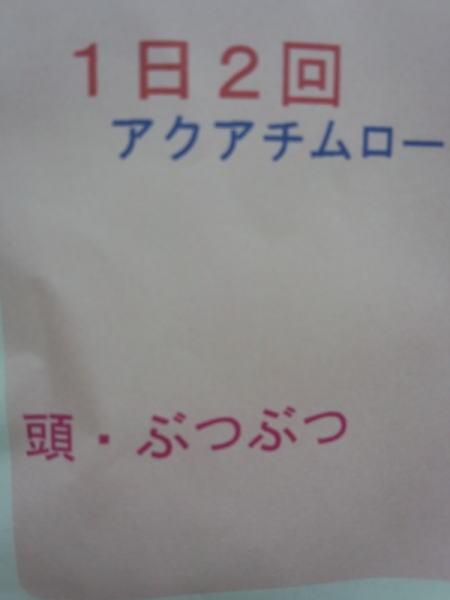 DSC_0046_20121113190024.jpg