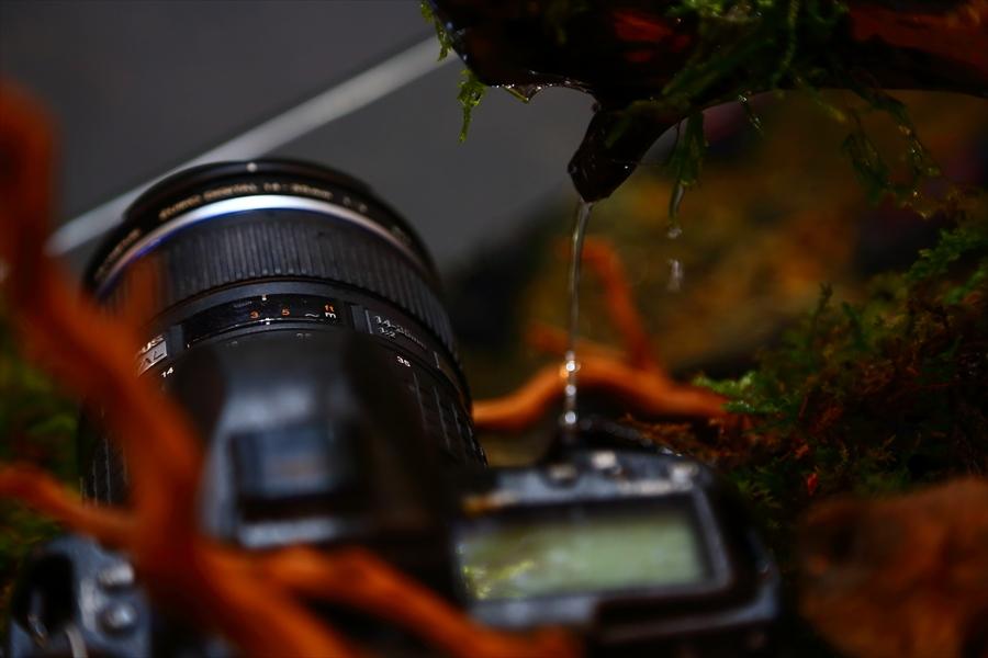CP2013オリンパスカメラ展示防滴04
