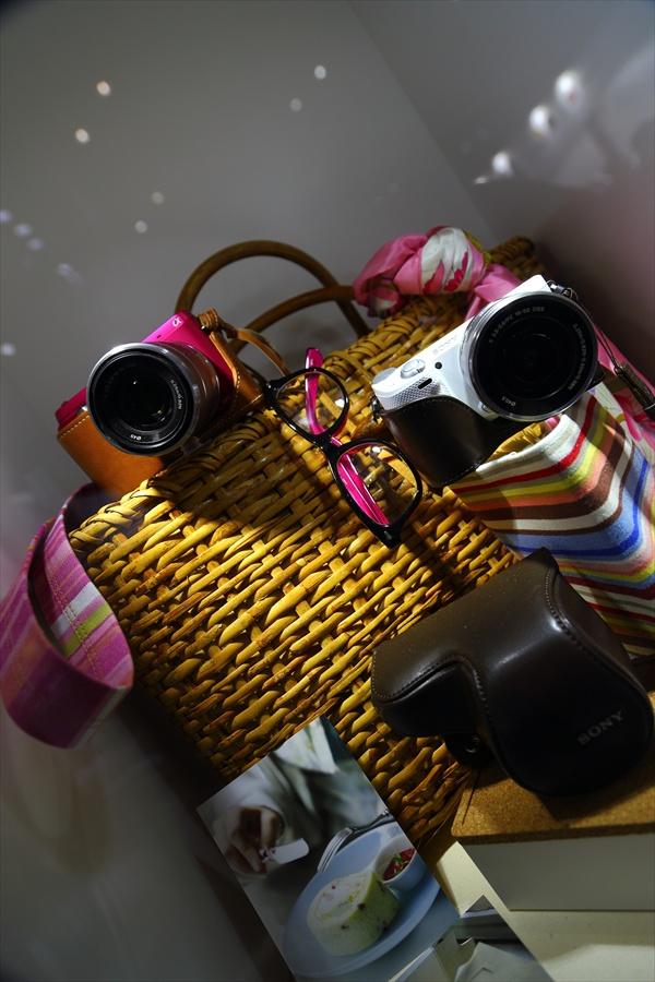 CP2013SONYカメラ装飾展示17