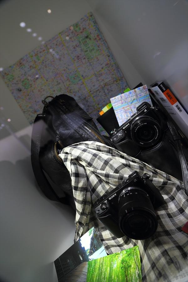 CP2013SONYカメラ装飾展示18