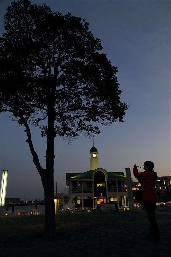 CP2013横浜トワイライト木とカメラ女子06