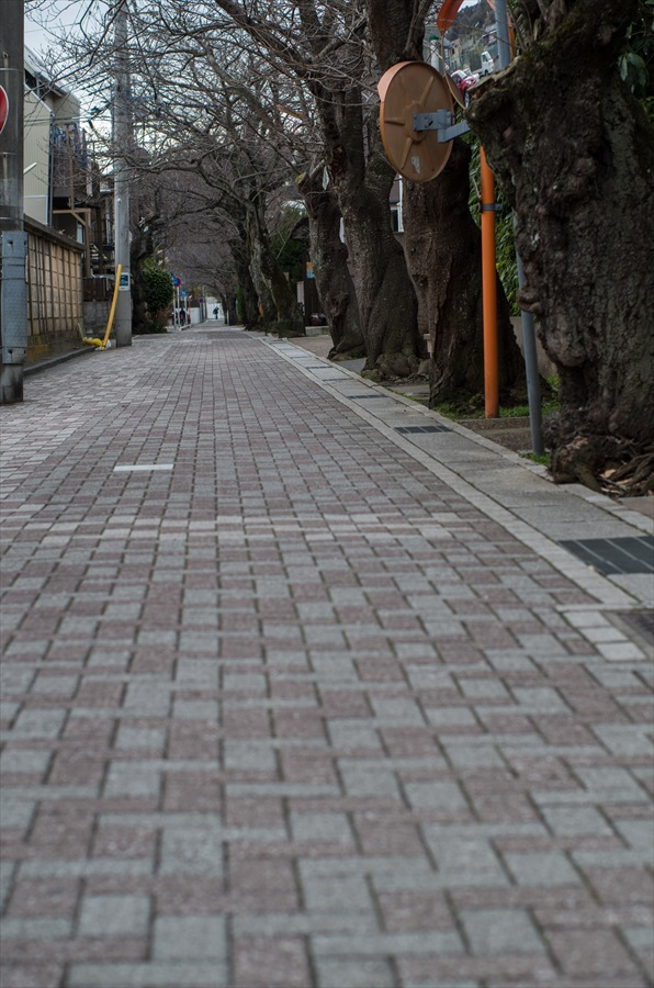 鎌倉スナップ路地石畳12