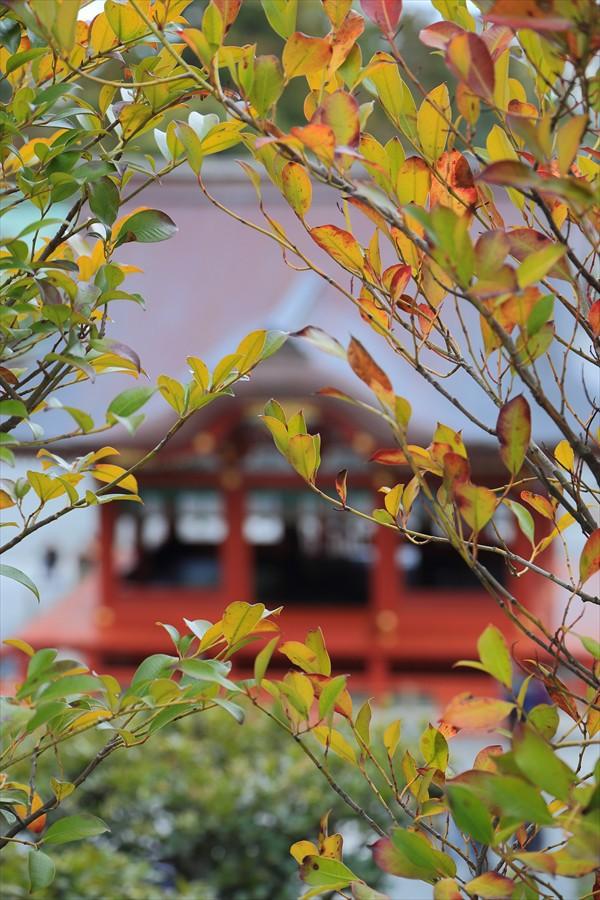 鶴岡八幡宮上段からのぞむ能舞台07