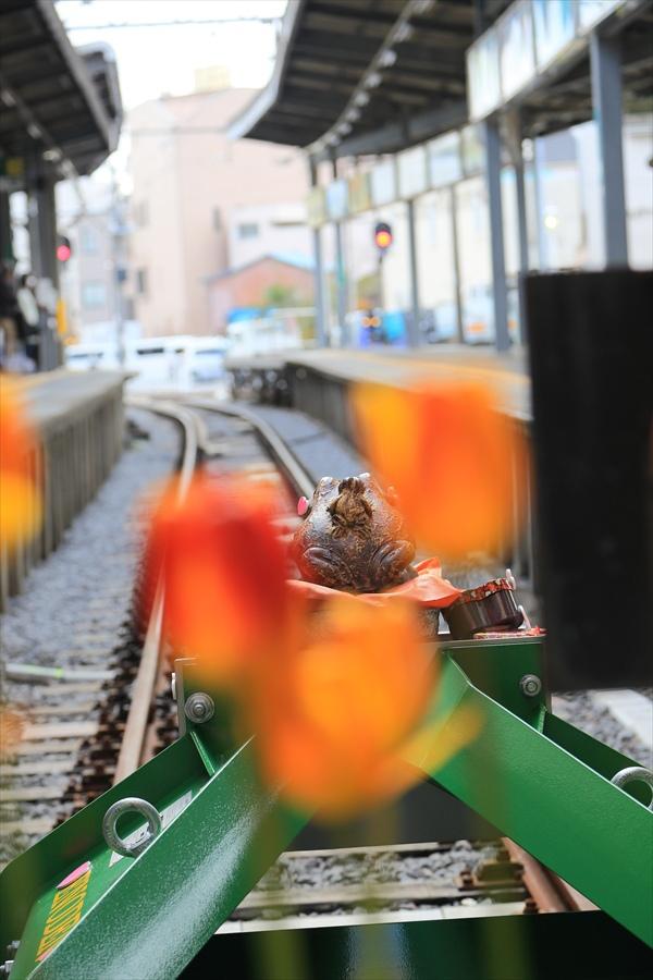 鎌倉江ノ電鎌倉駅かえるくん01
