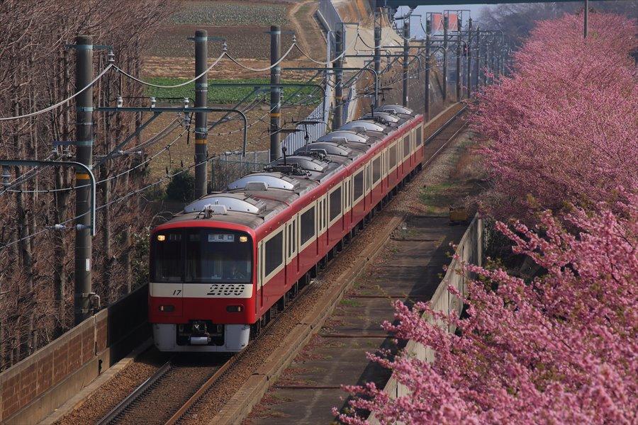 三浦京急桜上から02