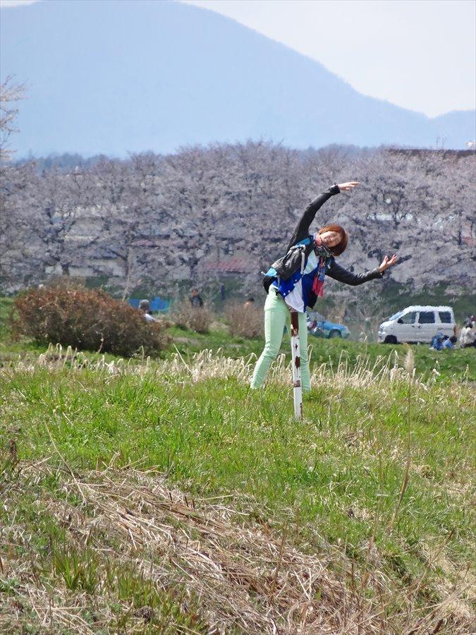 白石川千本桜その2ポーズ02