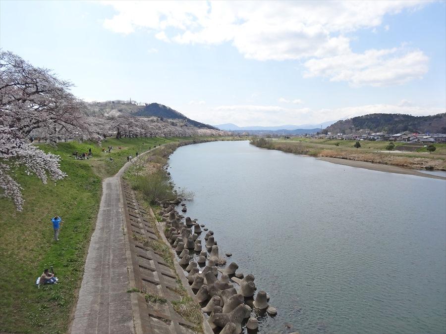 白石川千本桜その2歩行者用橋からの川全景14