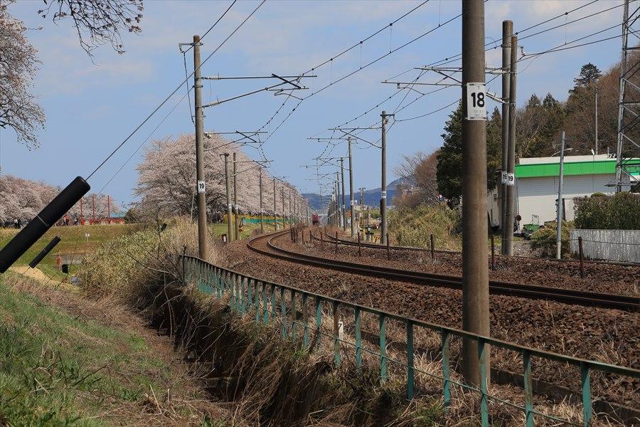 春の路線12