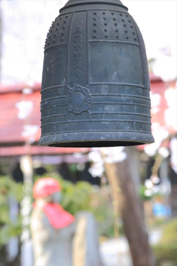 近隣お寺小さな梵鐘と桜13