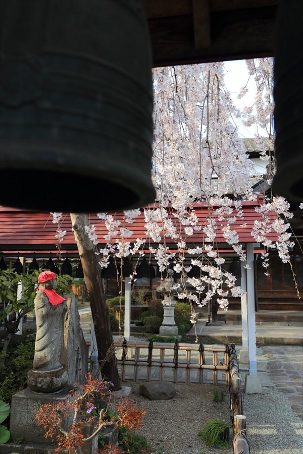 近隣お寺小さな梵鐘と桜とお地蔵さん15