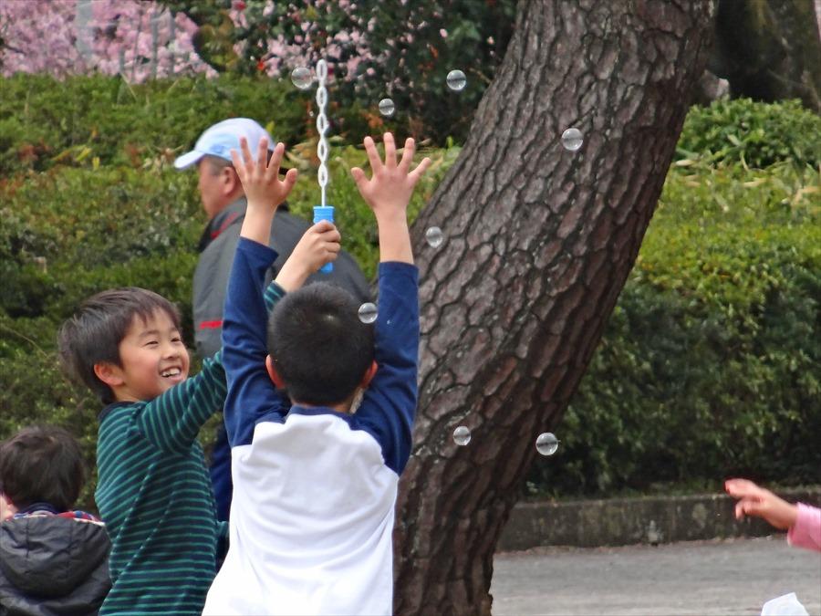 仙台榴岡公園桜その3シャボン玉10